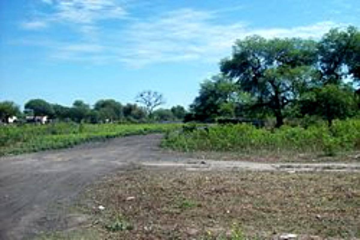 campo zona alberdi campo gallo santiago del estero
