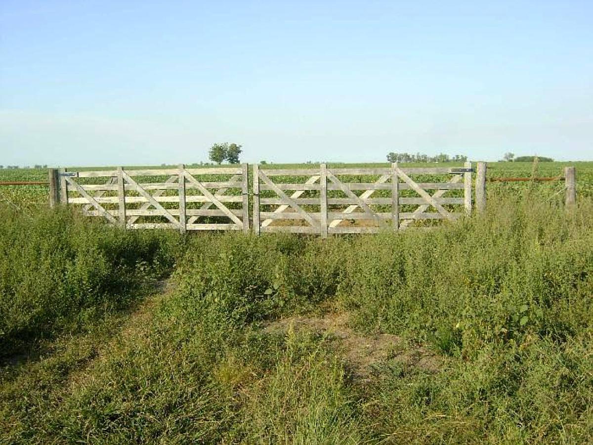 arrendamiento de campo agricola ganadero