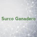 Surco Ganadero