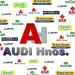 Audi Hnos