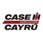 Cayrú