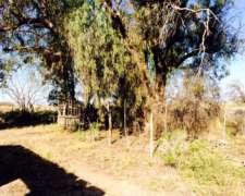 15 Hectareas Casa a Refacción 5 AMB Mendoza General Alvear