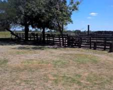 Campo Ganadero en Chaco las Garcitas 2620 Has