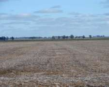 Ba3057 370 Has Venta de Campo Mixto Agricola Necochea