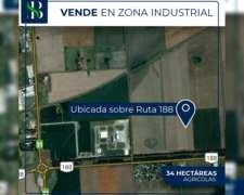 34 Hectareas en Zona Industrial Rojas