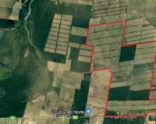 Importante Campo Agricola en Salta