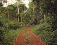 Campo Bernardo De Irigoyen ,sobre Ruta Provincial 18