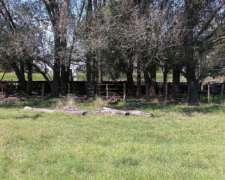 77 Hectáreas Agrícolas S/ruta 5 En Catrilo La Pampa