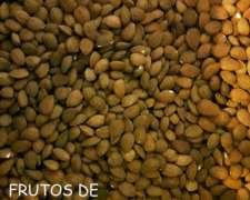 Almendras Premium Seleccionadas. Directo De Mendoza