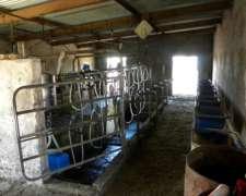 81ha Tambo Armado para 120 Vacas