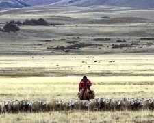 Administrador De Estancia En Patagonia Sur
