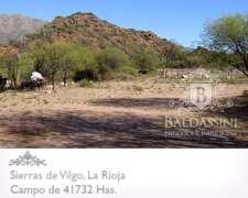 Campo de 41664 Has en Vilgo - Patquia - la Rioja - Mixto