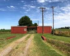 Lobos 134 Has Campo Agrícola Con Mejoras