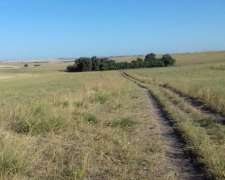 Vendo Campo Agrícola-ganadero Excelente Ubicación