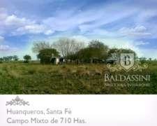 Campo Mixto de 710 Hectáreas en Huanqueros, Santa FE,