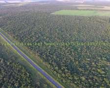 Campo Ganadero 89ha Monte Sobre Ruta 6 Entre Rios Bovril