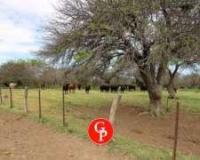 En Venta, 2.500 Has. Carro Quemado -la Pampa -