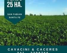 Vendo 25 HA. San Fabian Santa FE