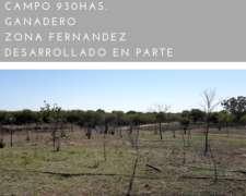 Campo Ganadero Santiago del Estero