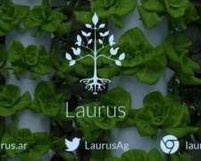 Laurus - Sistemas de Cultivo para Zonas Urbanas