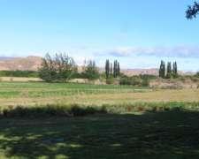 Paso del Sapo - 8.000 Ha - Chubut