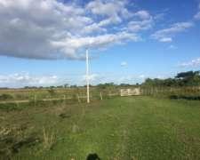 Alquilo Campo con Pasturas para Ganadero