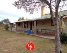 En Venta, 3.700 Has. Loventuel - La Pampa -