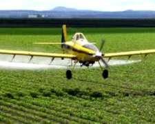 Coadyuvante para Aplicacion Agricola, Directo