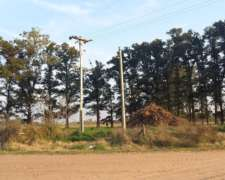 3600 M2 La Mejor Esquina En Paraje Forastieri - Roque Perez