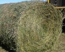 Rollos De Alfalfa - Establecimiento Raza Argentina