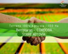 150 Ha Agrícolas En Venta - Berrotarán, Rio Cuarto, Córdoba