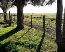 Campo en Venta 570 Hectáreas BS. AS. U$S 4.000 C/una