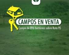 Se Vende Campo de 896 Hec. Sobre Ruta 95 Santa FE