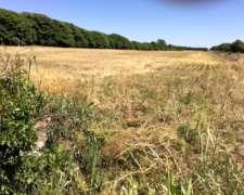 Campo 18 Has Agricolo-ganadero. Colonia Tirolesa