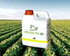 Microactive Insecticida - Cipermetrina 25% ME