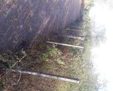 Campo en Paraje los Rosale Ha 43 km de Miraflores Chaco
