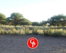 En Venta 8100 Has, Jaguel del Monte - la Pampa -