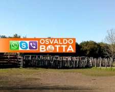 1300 Hactáreas en Curuzú Cuatiá, Corrientes
