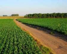 450 Has Agricolas Arroyo Barú Sobre Ruta