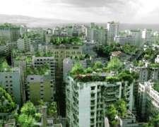 Techos Verdes Sustentables en Caba