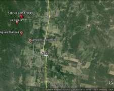 Campo Ganadero C/canteras Y Bosque Exp Forestal-oportunidad