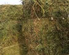 Megafardos Alfalfa 6X1 Unicos en el Pais