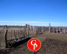 En Venta, 10.000 Has. Puelches - la Pampa -
