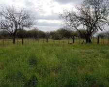 Galvez 560 Has Ganaderas. Campo en Venta.