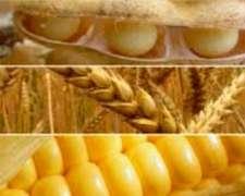 Poseo Clientes con Gran Cantidad de Cereales y Oleaginosas