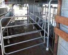 Bretes Para Cabras U Ovejas, Vacas
