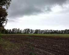 61 Hectáreas Agrícolas Sobre Ruta