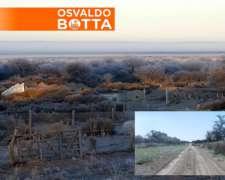 730 Has en Chapalco, la Pampa