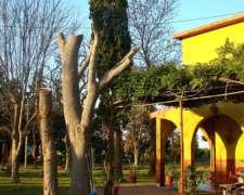 Importante Quinta en Atalaya, Provincia de Buenos Aires