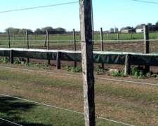 Comederos en Lona y Rafia para Hacienda Feed Lots-lonasalex
